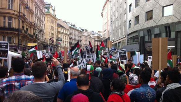 Protestors in the streets of Vienna (Luz Escobar)